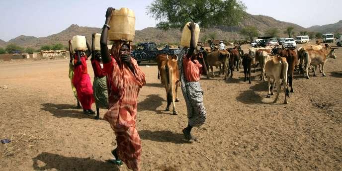 Au Soudan du Sud, 2,7 millions de personnes souffrent d'un manque de nourriture et sont affectées par les violences selon le Programme alimentaire mondial.