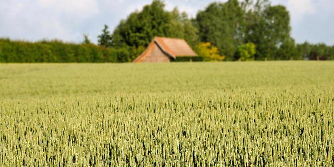 Selon des études réalisées par Météo France, l'assèchement des sols sera un élément déterminant du climat à venir.