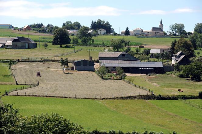 Un agriculteur professionnel serait donc un agriculteur bien doté, installé, à l'aise. C'est donc à ce type de professionnels-là que serait réservé l'accès aux aides. Une telle conception rapproche l'idéal professionnel vu par la FNSEA du mode de fonctionnement des professions établies, à numerus clausus et statut spécifique, dites « protégées » (agriculteur travaillant ses terres aux alentours de la ville de Bagnères de Bigorre, en août 2010).