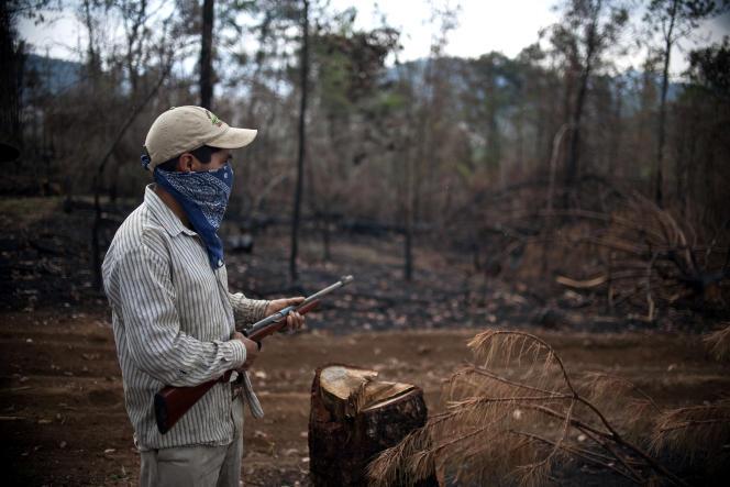 Un homme masqué et armé dans la forêt de Cheran (Etat de Michoacan) au Mexique, le 4 mai 2011.