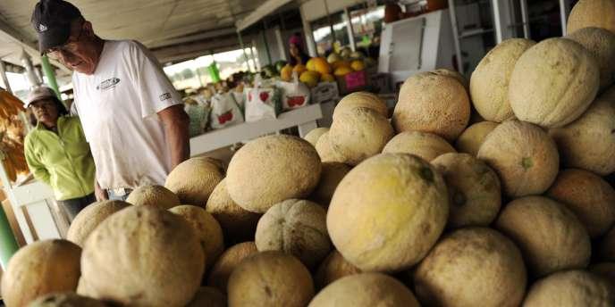 La mauvaise météo de cet été a entraîné une chute de la consommation du melon.
