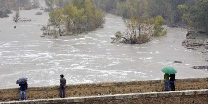 L'Hérault en crue, à Saint-Jean de Fos, le 4 novembre 2011.