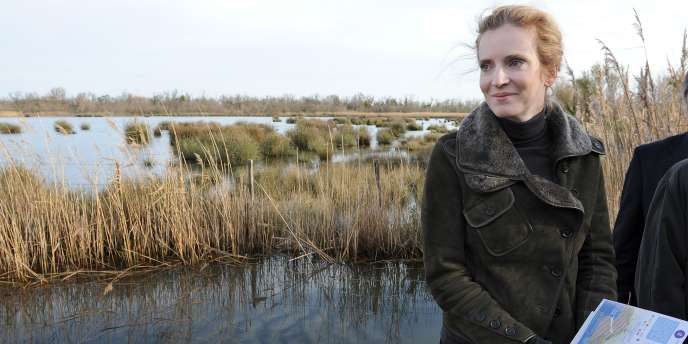 La ministre de l'écologie, Nathalie Kosciusko-Morizet, lors de sa visite au Marais du Vigueirat près d'Arles, le 15 novembre 2011.