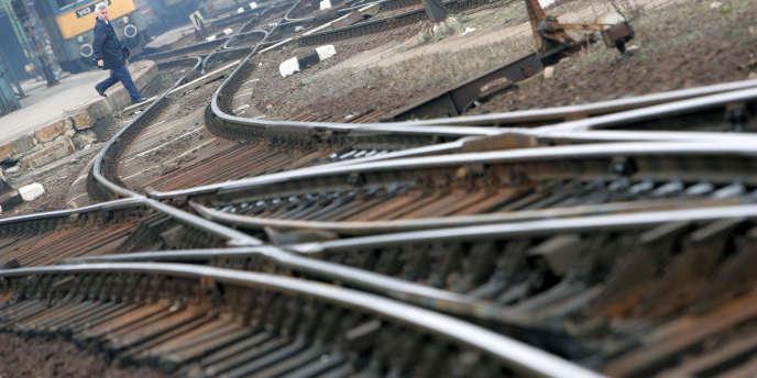 La campagne de vérification nationale des aiguillages lancée à la suite de la catastrophe de Brétigny n'a pas décelé de risques pour la sécurité, selon la SNCF.