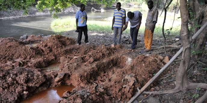 L'endroit où a été retrouvé le squelette à Yakoro dans l'ouest de la Côte-d'Ivoire.