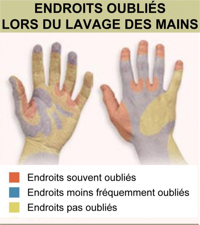 Endroits oubliés lors du lavage des mains.