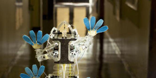 Le robot d'escalade Stickybot, créé à l'université Stanford.