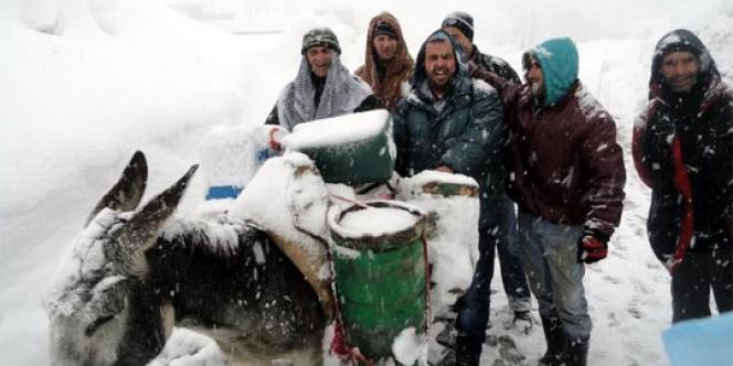 Ravitaillement en gaz à dos d'âne, en Kabylie.