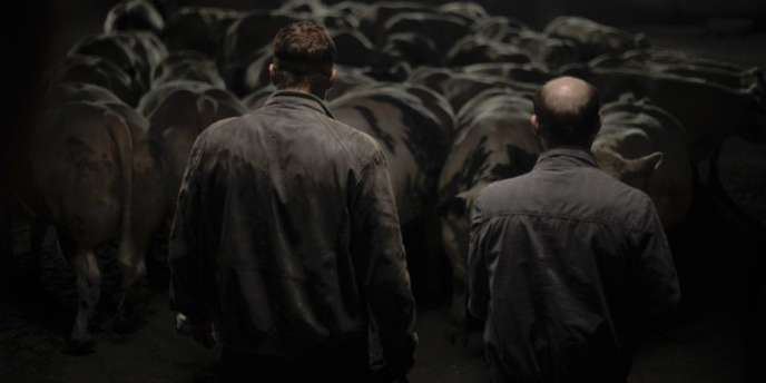 Une image du film flamand de Michaël R. Roskam,