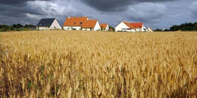 En cinquante ans, la surface agricole utile a diminué de 20 % dans l'Hexagone.