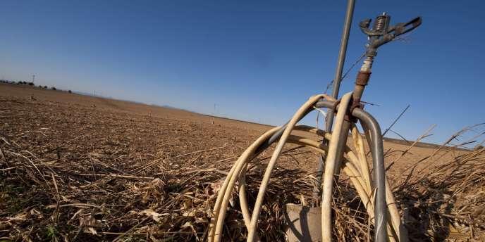 En Aragon, en Espagne, une alerte sécheresse a été déclenchée. Le pays a connu son hiver le plus sec depuis 50 ans.