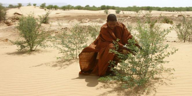 L'eau est un luxe dans les zones sahéliennes, mais fait aussi défaut dans les zones urbaines africaines