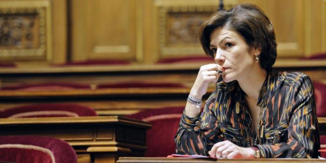Chantal Jouanno, le 23 janvier au Sénat.