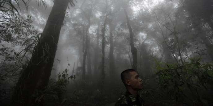Un soldat indonésien participe aux opérations de recherche du Soukhoï disparu mercredi, dans la jungle du mont Salak.