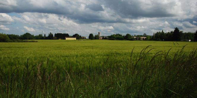 Au loin, le hangar d'Elodie Vilain, derrière des champs destinés à passer sous les constructions du cluster.
