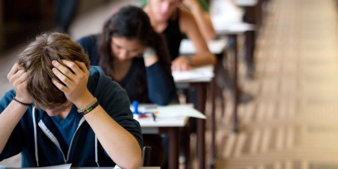 Aujourd'hui, pas une seule grande école n'échappe à la vogue du double diplôme, qui permet de bénéficier d'un label universitaire et d'élargir l'offre de formation.