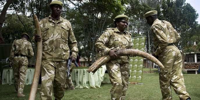 Au Kenya, les forces de l'ordre saisissent le butin de braconniers, le 22 juin 2012.