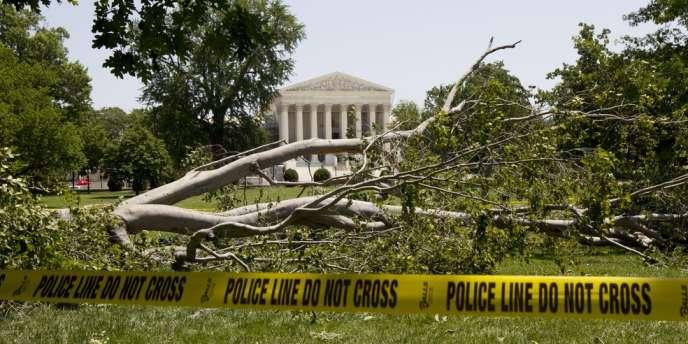 Un frêne abattu par la tempête, à Capitol Hill, à Washington D.C., le 30 juin 2012.