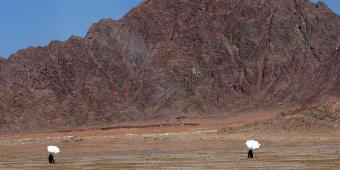 Dans le désert du Sinaï en Egypte.