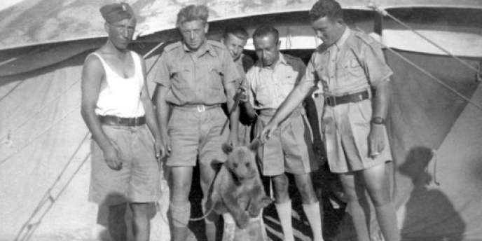 Wojtek, le seul ours au monde a avoir servi dans l'armée.