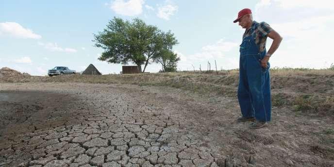 Environ 55 % du territoire continu des Etats-Unis, en particulier dans le Midwest, ont été frappés en juin par la sécheresse.