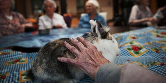 La résidence La Pastellière, à Toulouse, a mis en place un atelier de zoothérapie à destination des résidents les plus dépendants.