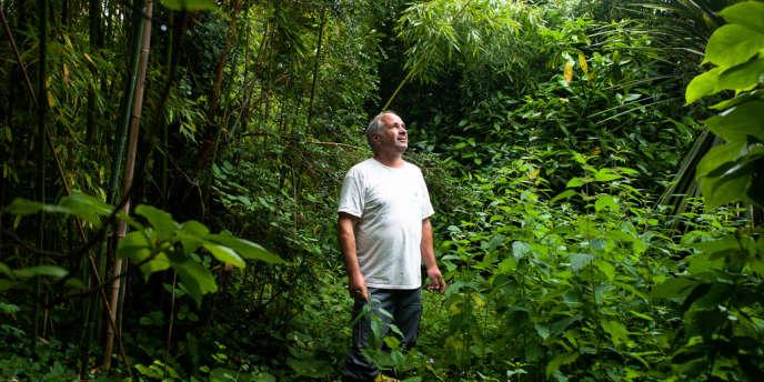 Pour perpétuer la riche diversité de la flore de l'île Tristan, Gil Moreau a planté 650 arbres…