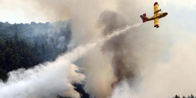 Un avion en pleine action dans la forêt d'Ouranoupoli, près du Mont Athos en Grèce.