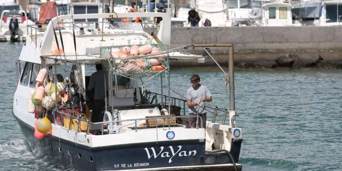 Un des bateaux ayant participé à la première pêche de requin quitte Saint-Gilles, vendredi 10 août.