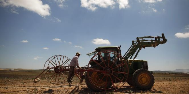 Un tracteur dans la coopérative fermière de Marinaleda.