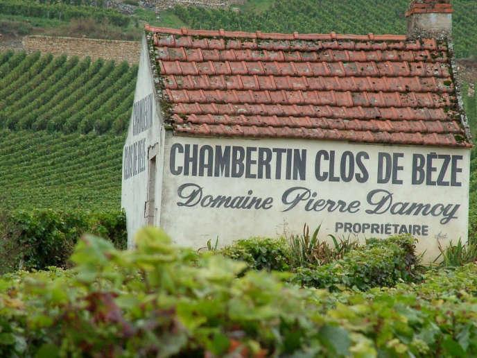 Gevrey-Chambertin est l'un des plus fameux vins de Bourgogne, mais aussi la plus célèbre appellation sur 550 hectares en Côte de Nuits.