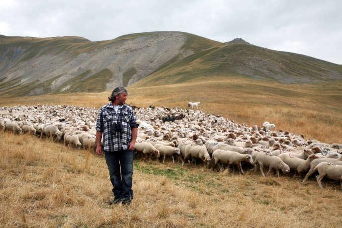Bernard Bruno, propriétaire du troupeau et éleveur depuis trente ans, pratique un pastoralisme traditionnel. Tous les ans, il effectue la transhumance à pied depuis Saint-Vallier-de-Thieys (Alpes-Maritimes).