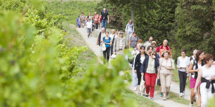 """Événement phare de l'œnotourisme en Val de Loire, """"Vignes, vins et randos"""" a rassemblé les 1er et 2 septembre près de 8 000 participants"""