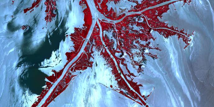 Vue du delta du Mississippi, prise depuis un satellite de la NASA, les traînées claires montrent le pétrole échappé en avril 2010 de la plate-forme de forage Deepwater Horizon de BP. La végétation est en rouge.