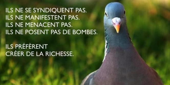 Les Pigeons : mouvement de défense des entrepreneurs français.