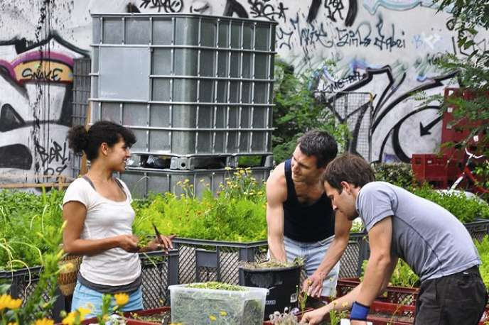 Dans ce jardin urbain où tous les publics se côtoient, on vient cueillir des tomates bio ou déjeuner végétarien pour six euros.
