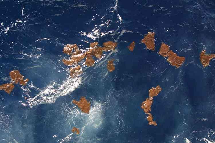 """des plaques de mazout issues du pétrolier le Prestige, dérivent le 10 janvier 2003 dans le Golfe de Gascogne, à environ 350 kilomètres des côtes aquitaines. Le bâtiment océanographique de la Marine nationale """"d'Entrecasteaux"""" navigue dans le Golfe pour rechercher les traces d'hydrocarbures qui s'échappent du pétrolier échoué au large de la Galice."""