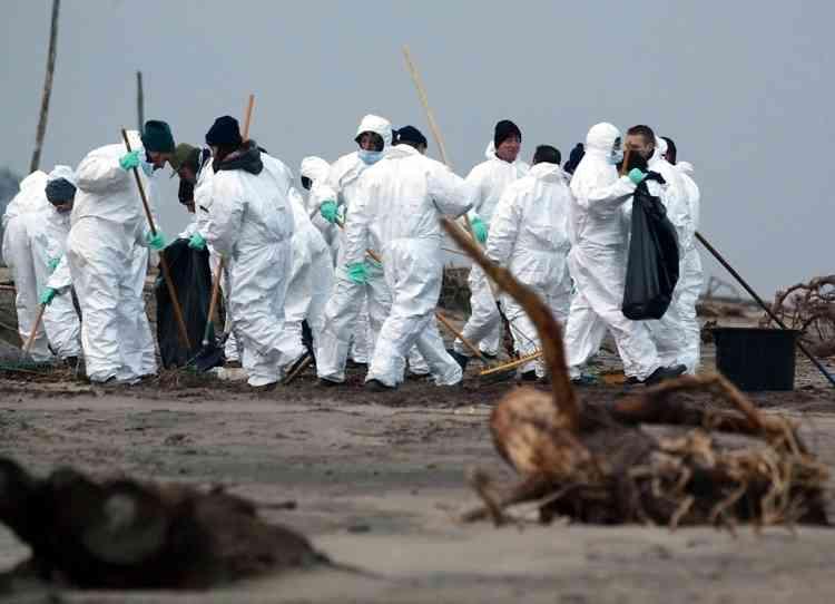 """une trentaine de bénévoles participent, le 11 janvier 2003, au nettoyage de la plage du Petit Nice à la Teste. Ils ont dû passer un examen médical, s'équiper de bottes, de combinaisons de gants et de masques avant de commencer à récolter les galettes d'hydrocarbures venues s'échouer sur les plages d'Aquitaine suite au naufrage du pétrolier le """"Prestige"""".  AFP PHOTO DERRICK CEYRAC Volunteers rake up debris and oil globs 11 January 2003, at the Petit Nice beach in Tests, where oil from the sunker tanker Prestige has washed ashore from the nearby waters off Spain's northern coast. AFP PHOTO DERRICK CEYRAC  AFP"""