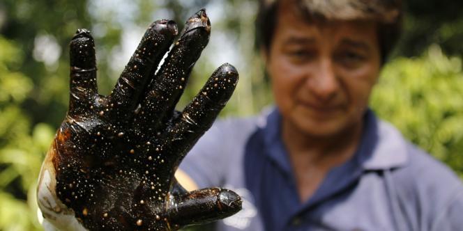Un militant écologiste montre un gant plein de pétrole après un test dans une parcelle de la forêt amazonienne polluée par la société Texaco, propriété de Chevron depuis 2001.