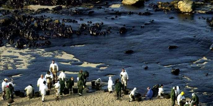 Des volontaires nettoient les côtes espagnoles, au large de la Galice, après le naufrage du