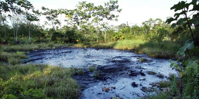 Une fosse pleine de pétrole brut, abandonnée par Texaco en Amazonie.