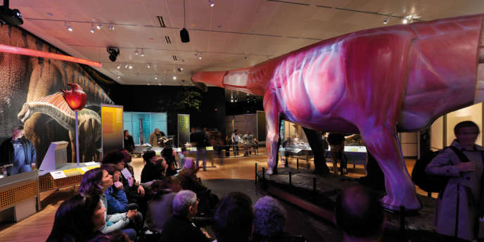 La paléontologie a très peu à dire sur la sexualité des sauropodes, et n'est pas encore capable de distinguer les mâles des femelles.