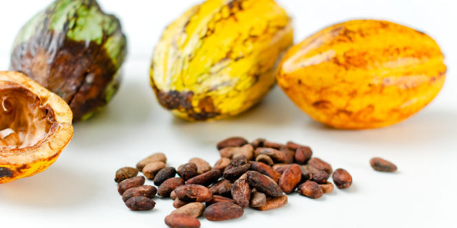 Le Salon du chocolat met les grands crus du cacao à l'honneur.