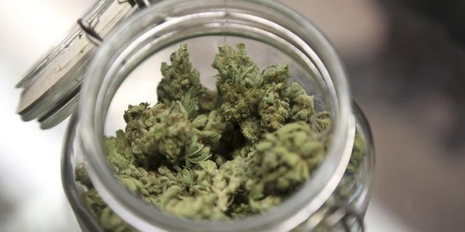 Cette initiative s'inscrit dans un mouvement plus global d'assouplissement de la législation sur le cannabis aux Etats-Unis.