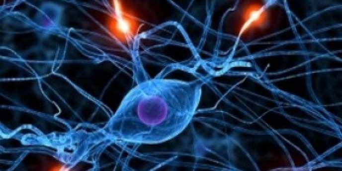 Les effets thérapeutiques de l'électroconvulsivothérapie reposent, au moins en partie, sur des propriétés de neuroplasticité.