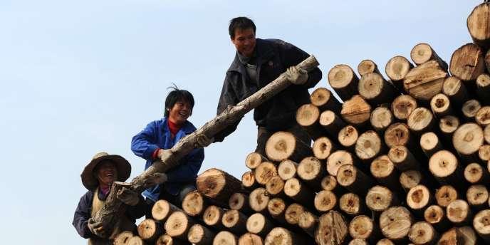 Dans la banlieue de Hefei, dans la province d'Anhui, en Chine, le 24 novembre.