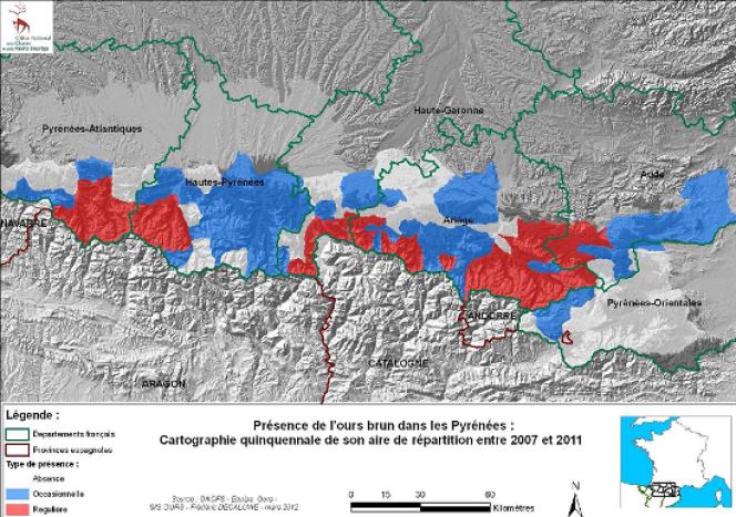 Aire de répartition de l'ours dans les Pyrénées entre 2007 et 2011.