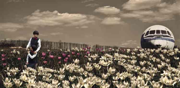 Tristesse du départ. Wang Lin éprouve une fascination pour les  tulipes, qu'elle compare aux hôtesses de l'air :  elles s'ouvrent la journée, aux yeux de tous,  et se reposent, loin des regards, dans l'obscurité. -