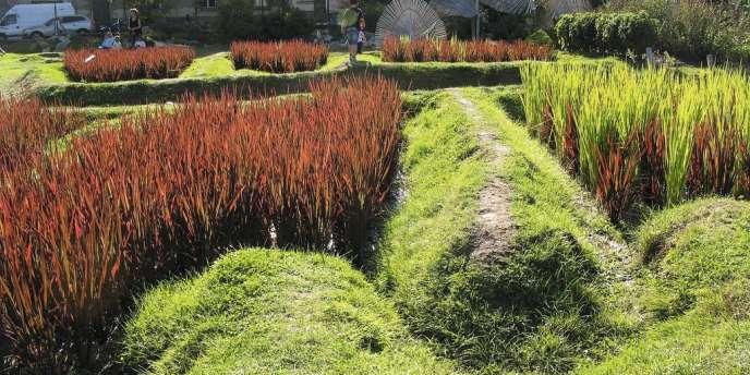 1- L'artiste paysagiste japonais Kinya Maruyama  a investi le Jardin des plantes nantais (3) en dessinant une rizière (1), un potager,  et des installations poétiques (2). -
