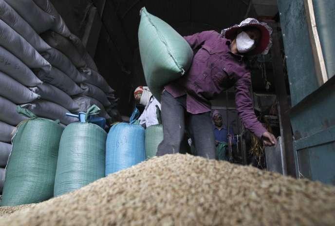 Le riz est l'alimentation de base de la moitié de la population mondiale.